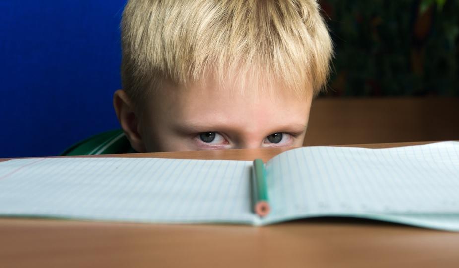 En España la incidencia del TDAH alcanza al 6,6% de los alumnos. / Oksana Mizina (Shutterstock)